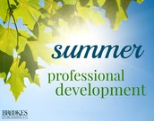 Summer Professional Learning