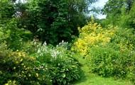 Chapel Gardening