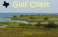 Geographic Feature: Gulf of Mexico